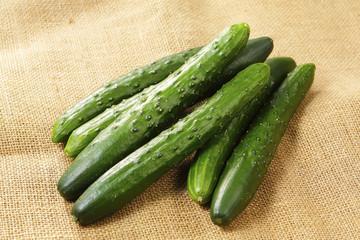 きゅうり Cucumber