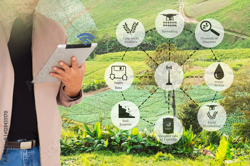 Precision Agriculture and Agritech concept  Sensor network in