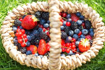 Organic summer berries. Selective focus