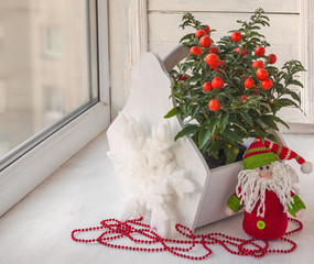 Window decoration for the winter holidays with a toy and nightsh