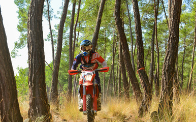 motosiklet yarışı için orman parkuru