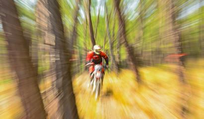 kros motosiklet ile ormanda gezi