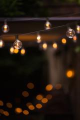 light bulb in garden