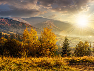 foggy and hot sunset in Carpathian mountains at sunset