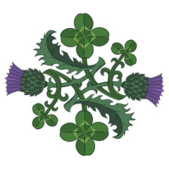 Thistle and Clover. The symbols of Ireland and Scotland. Twisted clover and Thistle