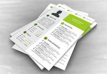 Resume Layout with Green and Gray Panels