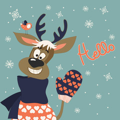 Reindeer says hello