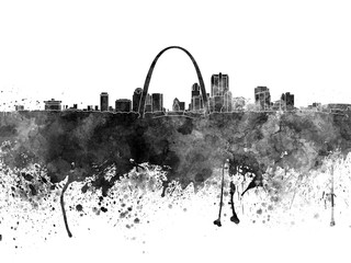 Wall Mural - St Louis skyline in black watercolor
