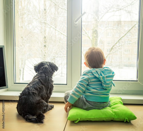 Baby with dog looking through a window in winter boy and pet friends concept rear view with - Dogs for small spaces concept ...
