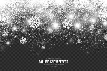 Falling Snow Effect on Transparent Background Vector Illustration. Abstract bright white shimmer glowing scatter round particles, lights and snowflakes Wall mural