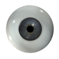 Eyeball Iris and Pupil