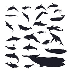 Dolphin & Whales Vector Sihouette Set