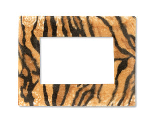 Wildlife fur tiger photo frame isolated on white