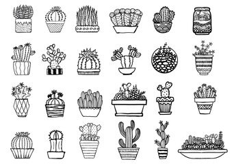Hand drawn cactus isolated on white background
