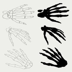 Human hand bones anatomy isolated vector illustration. Black and white   for medical or Halloween design.   bo