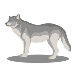 wolf vector illustration style Flat side profile