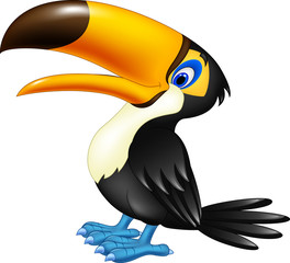 Happy toucan posing