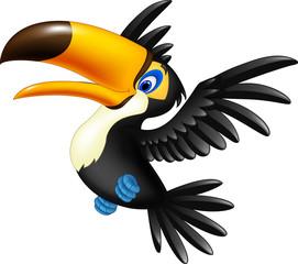 Happy toucan flying