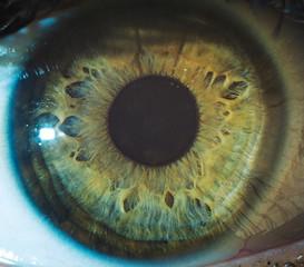 Poster Iris Macro eyes pupil iris oculist