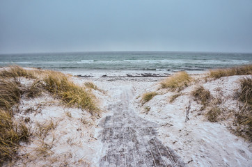 Rough autumn/winter baltic beach with sand, path and grass. Photo with gray atmosphere. Empty space