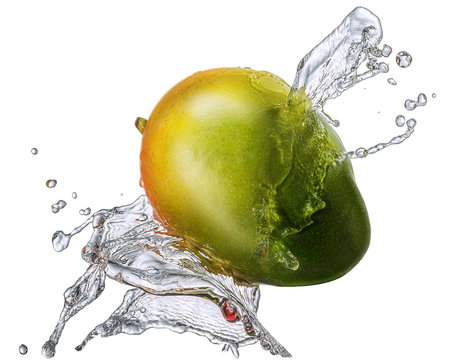 Water splash and fruits isolated on white backgroud with clipping path. Fresh mango