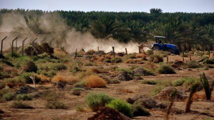 Traktor auf einem Feld neben Minensperrgebiet
