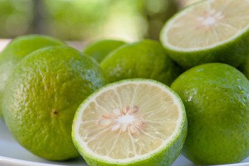 Closeup Lime slice
