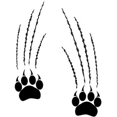 Footprints or steps of a big cat. Panther or tiger traces. Vector