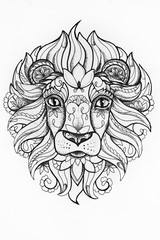 Sketch of a lion with patterns white background.