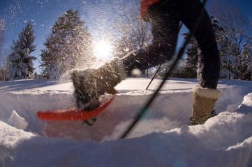 Snowshoeing in fresh powder Colorado.