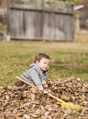 Boy raking fallen leaves