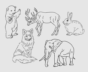 Animal line art drawing style. Good use for symbol, logo, web icon, mascot, sign, sticker, or any design you want. Easy to use.