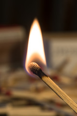 One lit match with unlit matchsticks in the background