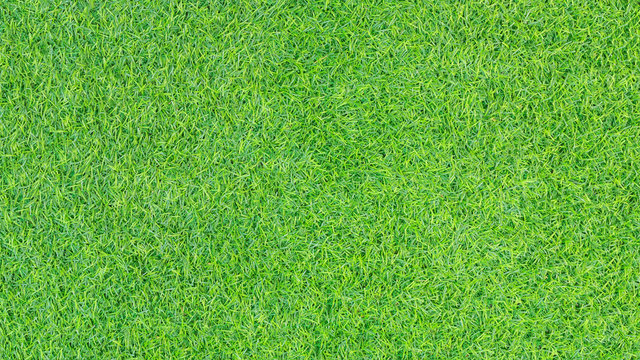 Green grass texture or Green grass background. Top view of artificial green grass for golf course and soccer field. Abstract artificial green grass pattern for design with copy space.