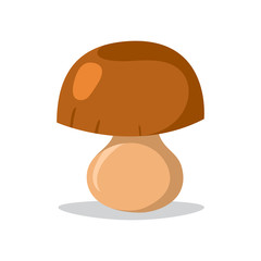 Fresh mushroom isolated illustration