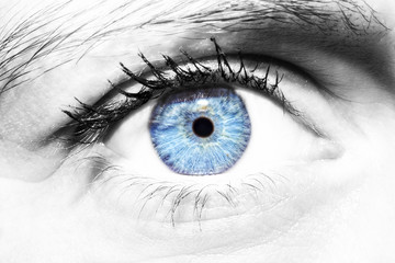 Beautiful insightful look women's blue eye