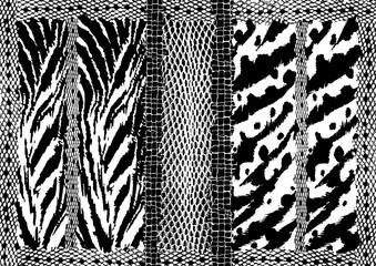 Animals print textures