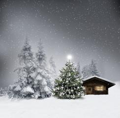 Wall Mural - Weihnachtshütte mit Silbernem Weihnachtsbaum