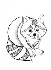 Raccoon drawing pencil Doodle