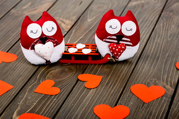 Two red soft owls with sledge lying on wooden surface