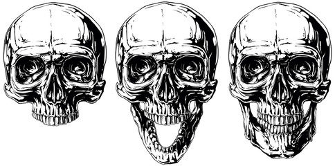 Set of graphic black and white human skull tattoo
