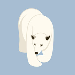 Polar bear  vector illustration Flat style