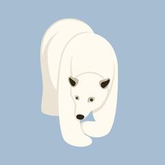 Polar bear  vector illustration Flat style