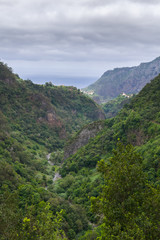 Breathtaking panorama in the heart of Madeira Island, Ribeiro Frio, Madeira, Portugal, Europe