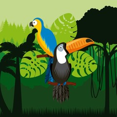 toucan and macaw birds over jungle background. colorful design. vector illustration