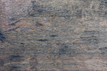 texture of bark wood use as natural background.background of bar