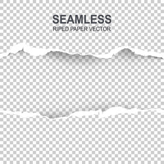 Seamless ripped paper and transparent background