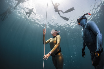 Wall Mural - Lady free diver ascending along the rope in the depth