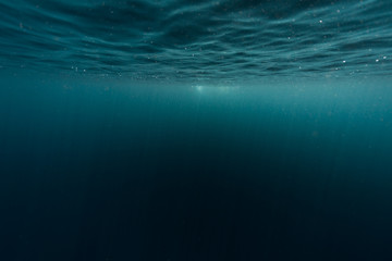 Wall Mural - Underwater shot of sea surface with waves