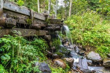 Wasserzufuhr aus dem 19. Jahrhundert in einem Waldstück in den Alpen